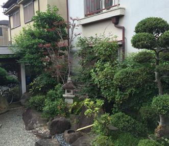 施工前の中庭